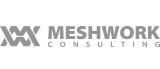 Freelance graphic design for Meshwork Consulting